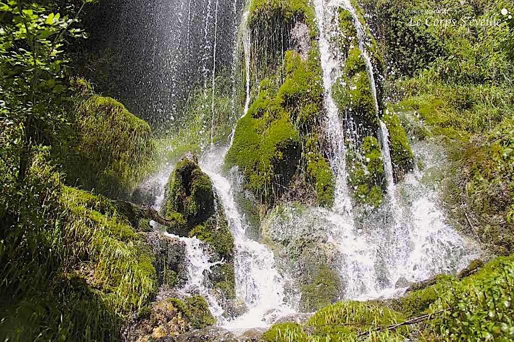 La cascade de la Roche qui pleure, c'est l'histoire d'une rencontre entre la pluie et l'humus végétal de la montagne.