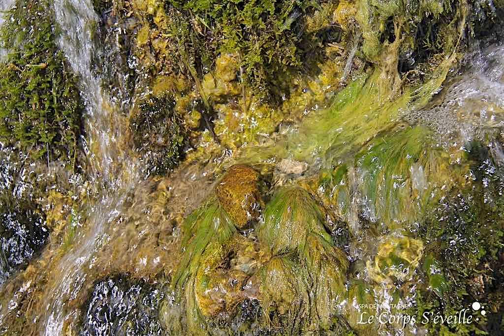 Après un massage bien-être, prolonger ses découvertes tactiles dans les Pyrénées : toucher la cascade de la Roche qui pleure.