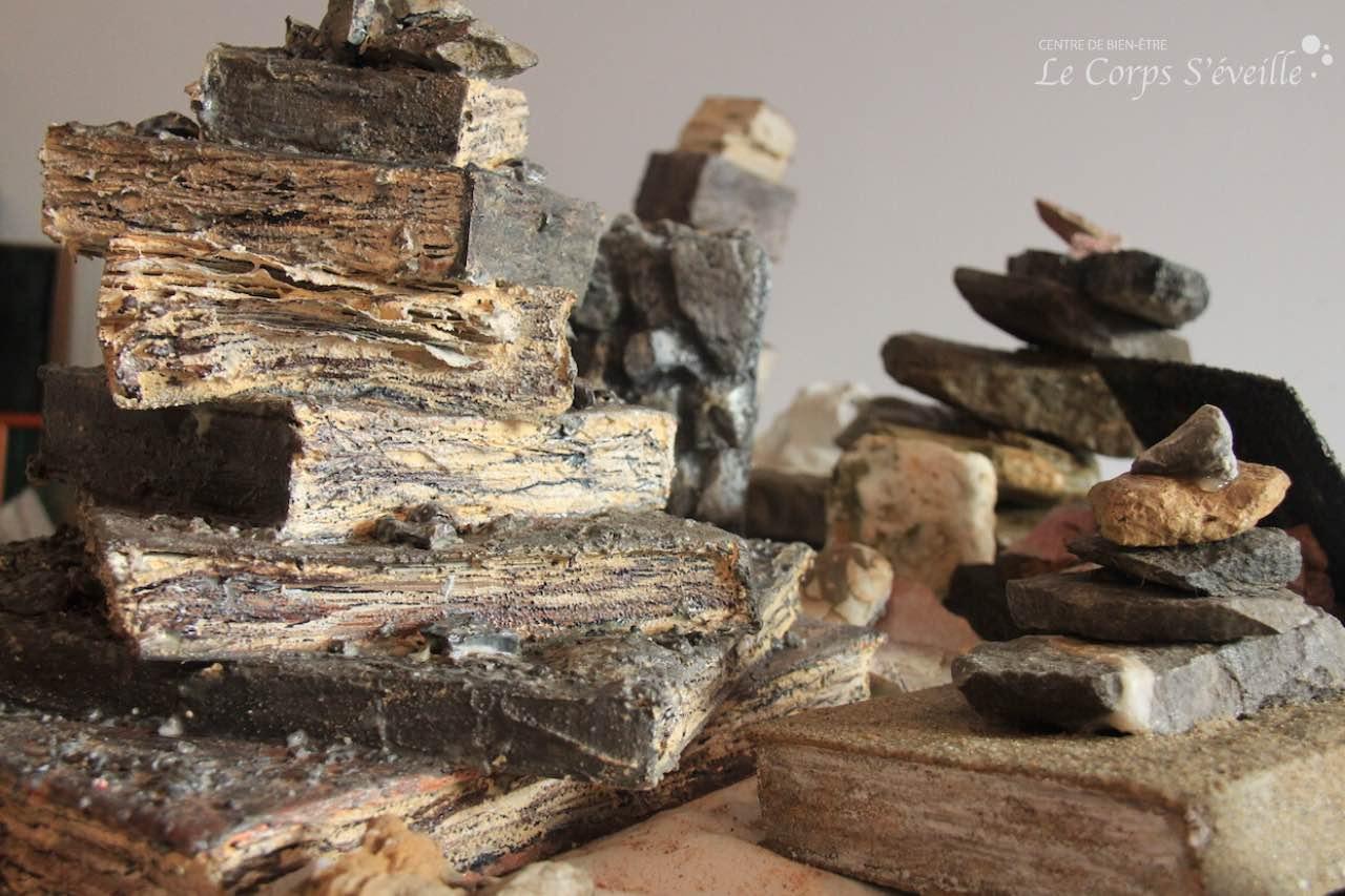 Danièle Gay sculpte le bois et la pierre. Série : Livres objets.