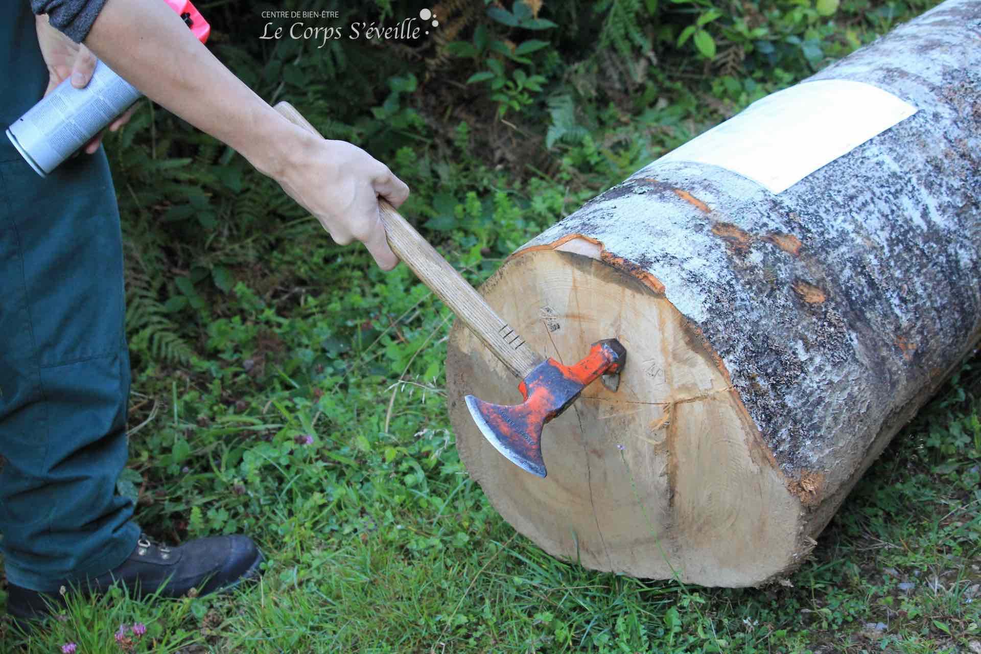 Un agent forestier ONF appose le sigle AF (administration forestière) sur le tronc d'un arbre tombé à terre, validant ainsi sa prise en charge par une entreprise agréée.