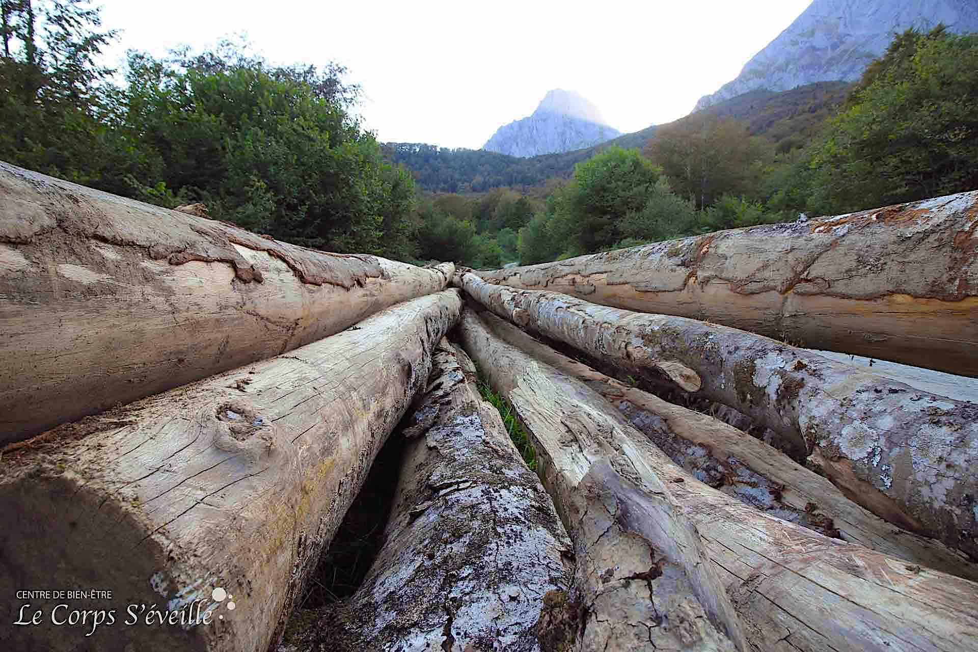 Le Cirque de Lescun, un trésor de bois pour les besoins humains.