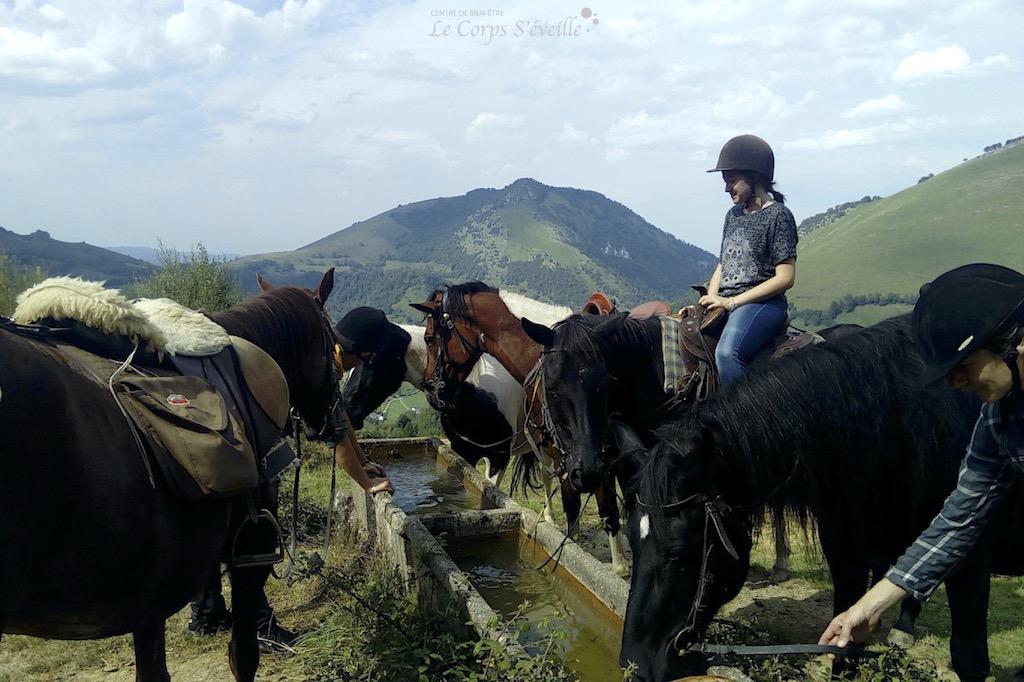 Randonnnée à cheval autour de Lourdios-Ichère, en Vallée d'Aspe.