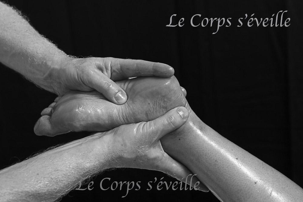 Un massage label France Massage® aux huiles Bio à Oloron-Sainte-Marie, Béarn en Pyrénées.