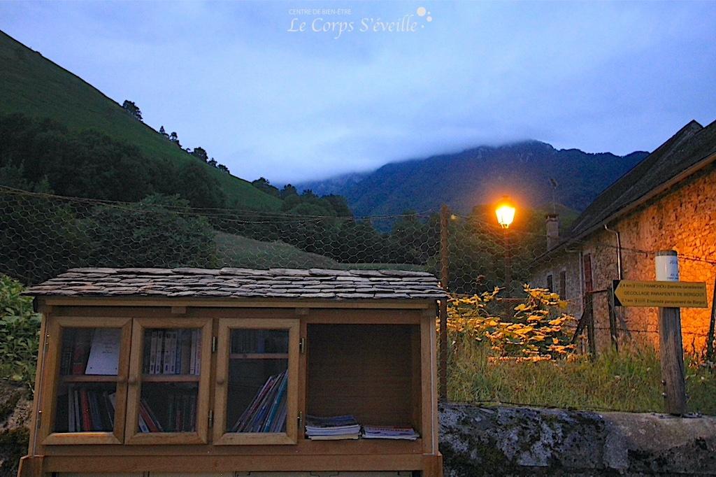 Du tronc de robinier à une boîte à livres, quinze jours de travail. Création visible à Jouers, en Vallée d'Aspe.