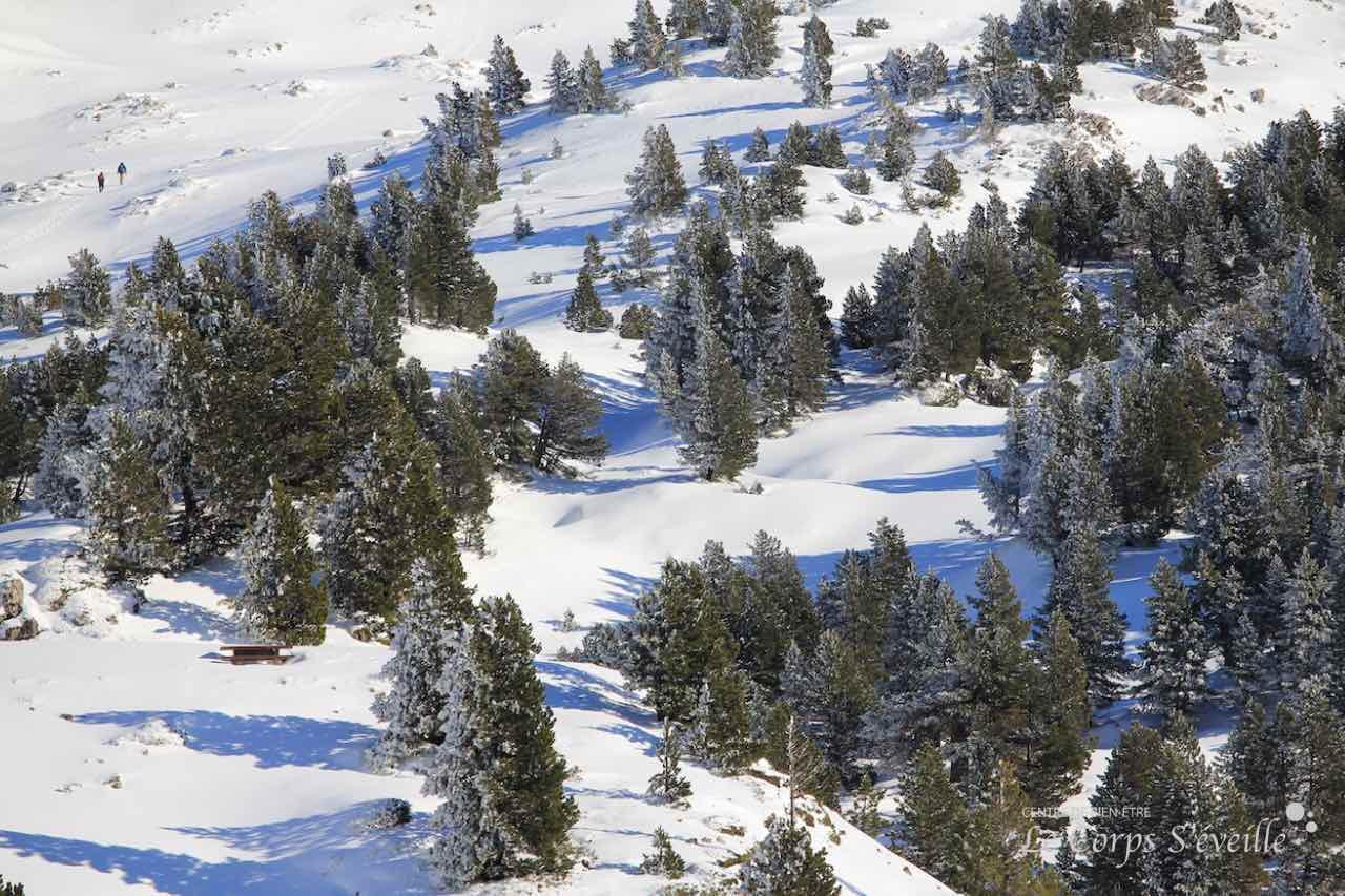 Écouter la neige crisser sous ses pieds. À proximité de La-Pierre-Saint-Martin, dans les Pyrénées béarnaises.