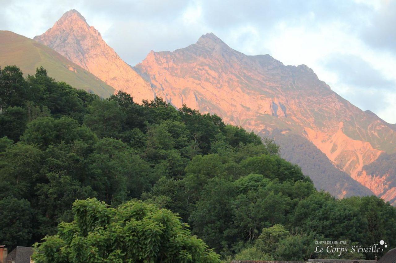 Offrir un massage bien-être aux quatre saisons dans les Pyrénées, au sud de Pau et Oloron-Sainte-Marie.