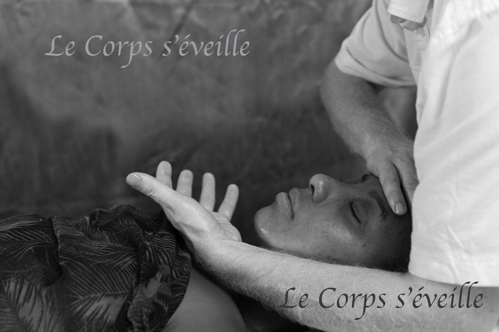Le Centre de bien-être est situé à Bedous, dans les Pyrénées béarnaises.