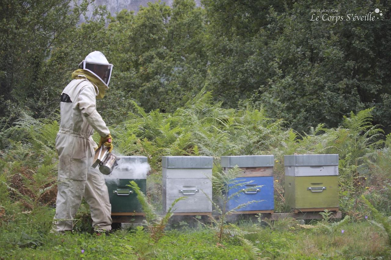 Phéromones et vibrations des ailes indiquent à l'apiculteur l'état de stress des abeilles.