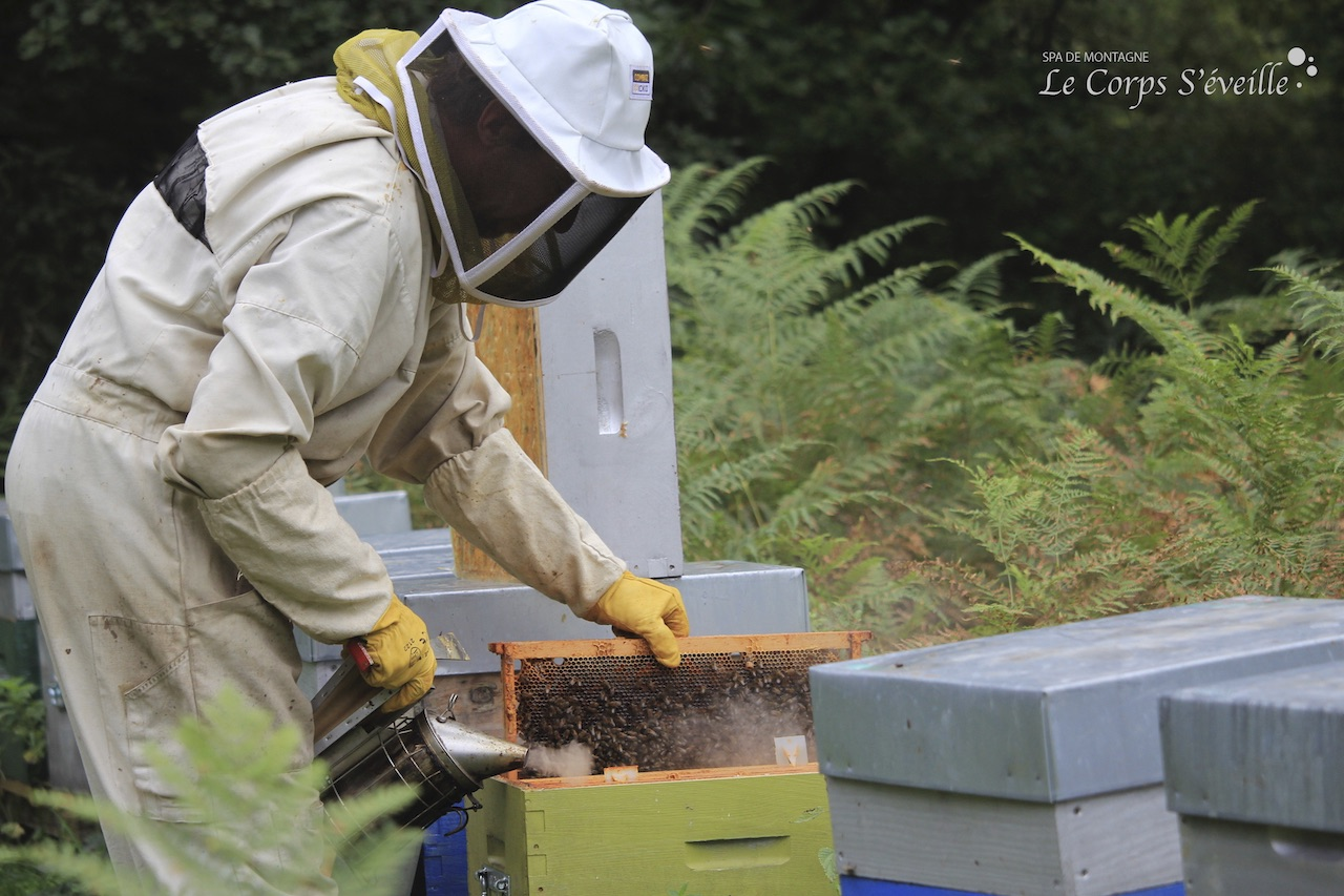 Une ruche en bonne santé se voit par la présence des abeilles qui font battre leurs ailes sur la tête des cadres.
