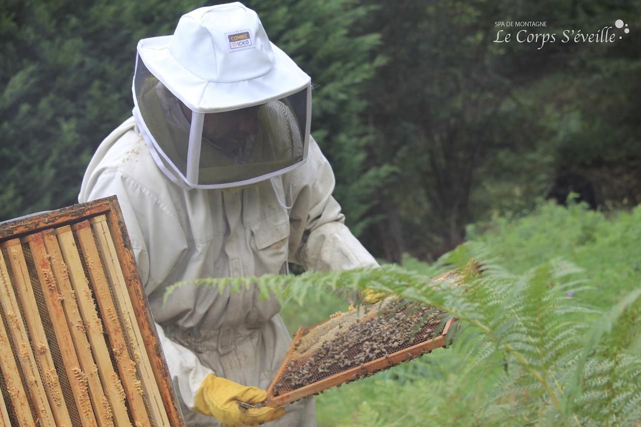 Les abeilles craignent l'humidité : retirer le toit de leur maison quand il pleut entraîne une rafale de piqûres.