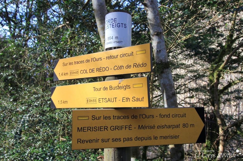 Sur les traces de l'ours à Etsaut. Prendre son temps pour explorer un coin de montagne, Béarn en Pyrénées.
