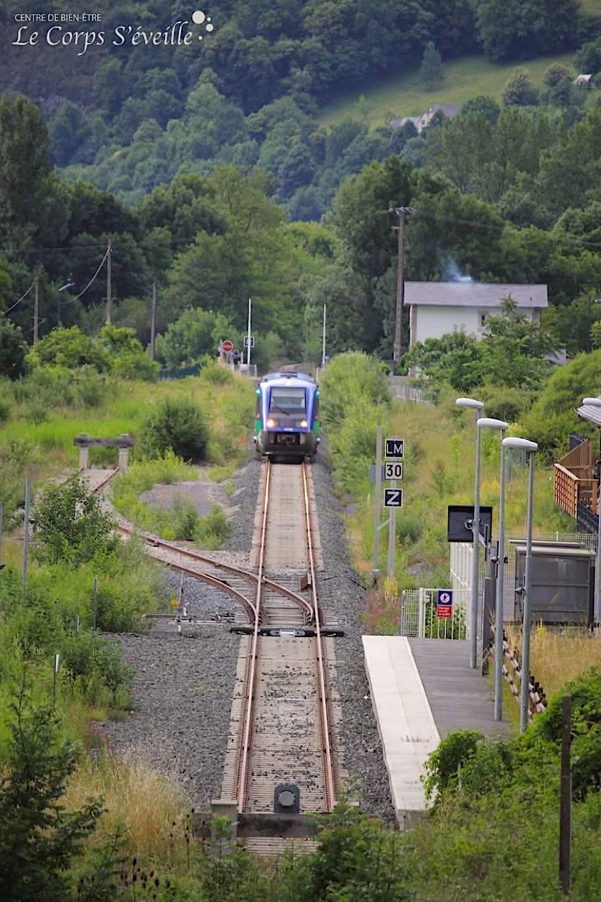 La ligne TER entre Pau et Bedous via Oloron-Sainte-Marie : 6 trains dans chaque sens en été.