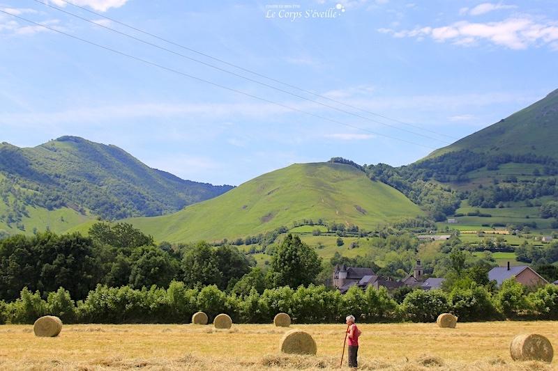 Randonner en Vallée d'Aspe à partir de Bedous, Pyrénées béarnaises.